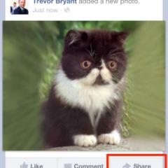 """Facebook aggiunge (finalmente) il tasto """"condividi"""" sulle sue app mobile"""
