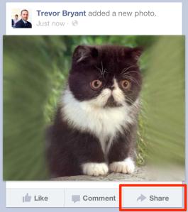 photo share me cropped done Facebook aggiunge (finalmente) il tasto condividi sulle sue app mobile Facebook